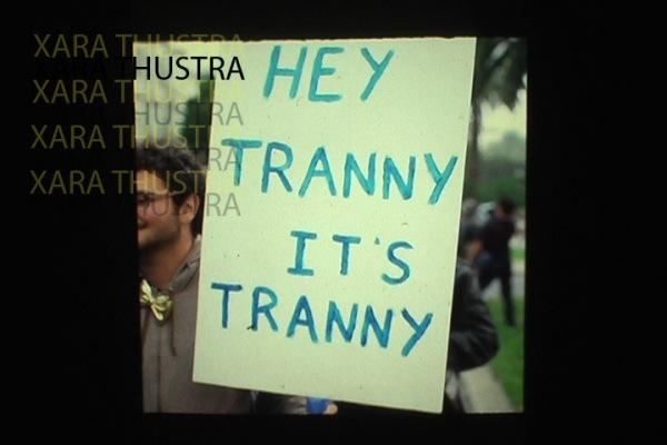 trannytranny copy